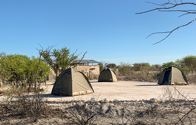 Group Campsite